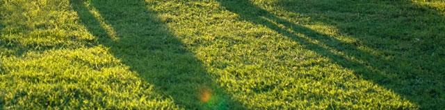 Valg af plæneklipper til den store have
