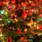 X-mas tree, juletræ