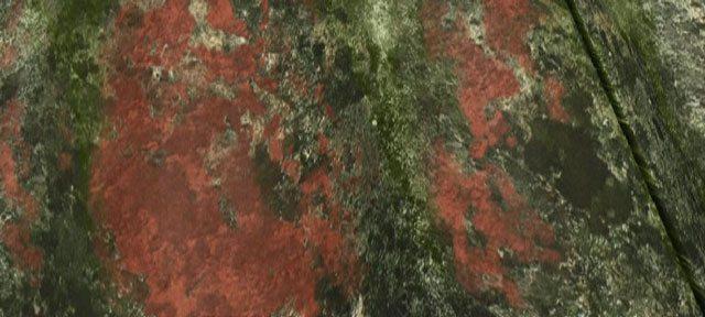 Rensning af tag – Hvilke tage kan renses