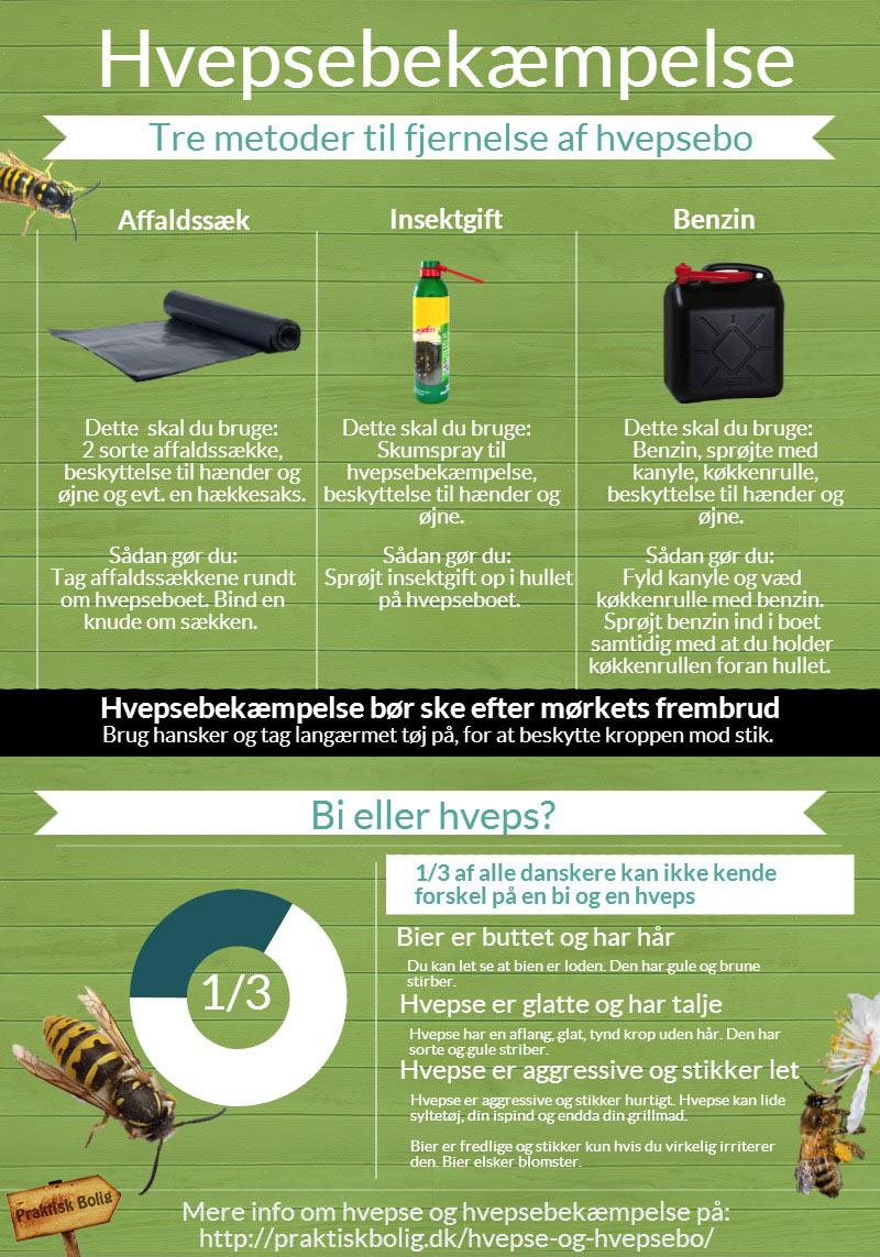Bekæmpelse-af-hvepse-infografik-51