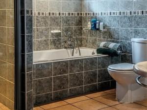 badeværelse-skimmelsvamp